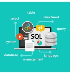 Sql structured query language database symbol vector