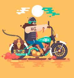 biker riding with racer helmet on motorcycle vector image