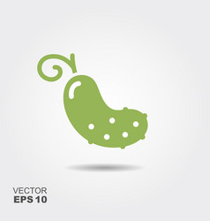 Cucumber flat icon with shadow vector