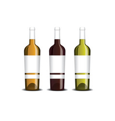 Mock up of the wine bottle with label vector