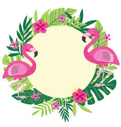 Tropical frame with flamingo vector