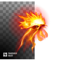 Fiery rooster head on transparent background vector