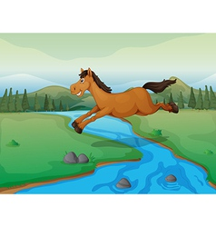 Horse crossing the river vector