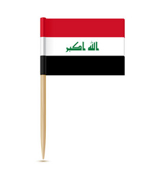 iraq flag toothpick vector image vector image