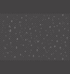 vapor bubbles or water rain drops or on window vector image
