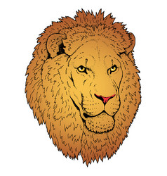 Beautiful lion artwork detailedafrican predator vector