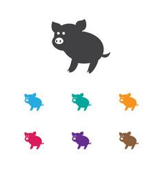 Of zoo symbol on piggy icon vector