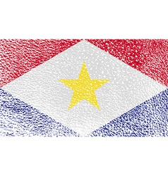 Flag of saba with old texture vector