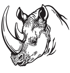 head of rhino black white vector image