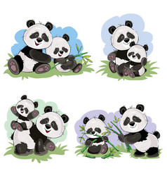cartoon set of cute panda bear characters vector image