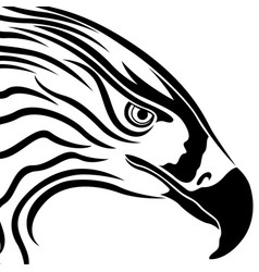 Head of eagle with massive beak vector