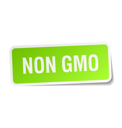 Non gmo green square sticker on white background vector