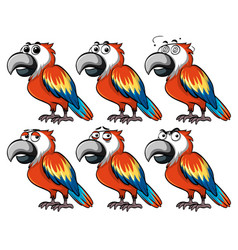 Parrot with different emotions vector