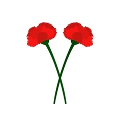 Two carnation flowers icon vector
