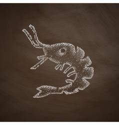 shrimp icon vector image