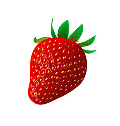 Ripe juicy strawberry isolated on white vector