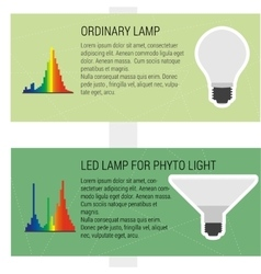 Features led and ordynary lamps vector