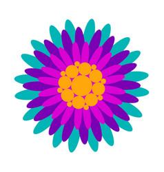 decorative asian flower vector image