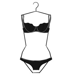 Gray and light gray lacy underwear set hanging on vector