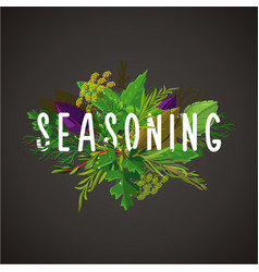 Green herbs and seasoning cooking ingredients vector