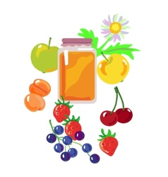 Honey and fruits and berries vector