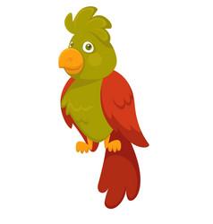 parrot bird pet cartoon flat icon vector image vector image