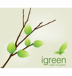 Branch green vector
