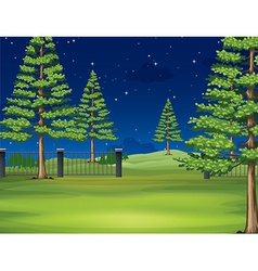 National park at night vector image