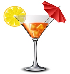 Orange cocktail with lemon slice and umbrella vector image vector image