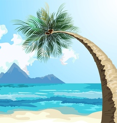 Palm on the beach vector