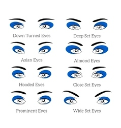 Easy makeup tips for the eyes vector