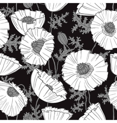 poppies flower vector image vector image