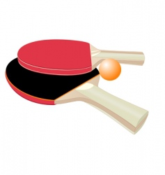 table tennis rackets vector image vector image