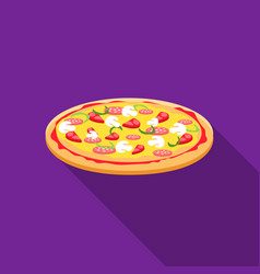 pizza icon in flat style for web vector image