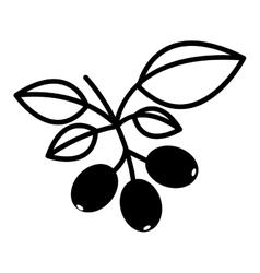 Coffee plant icon vector