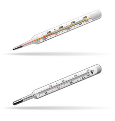 Thermometers medical glass mercury and alcohol vector