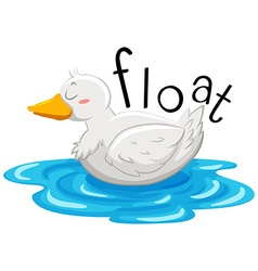 Little duck floating on the water vector image