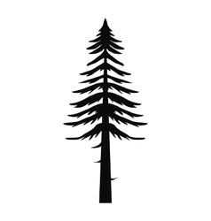 Canadian fir icon simple style vector image