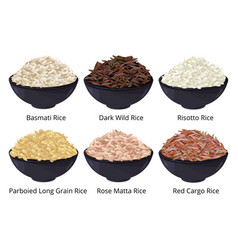 Different type of rice long grain brown white vector