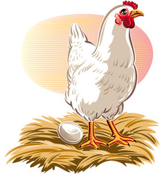 Hen has laid her egg vector