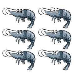 shrimp with different expressions vector image