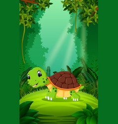 Turtle in the clear and green forest vector