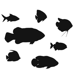 Different fish silhouettes vector