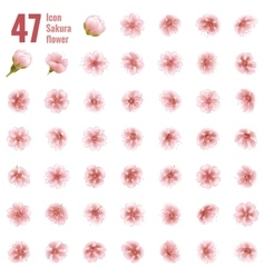 Sakura cherry icon set of 47 flower EPS 10 vector image