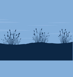 silhouette of coarse grass on hill landscape vector image vector image