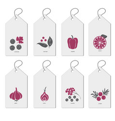 template a set of bags with spices hand drawn vector image