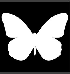 Butterfly the white color icon vector