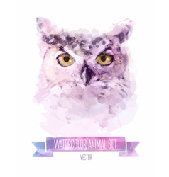 Set of watercolor  cute owl vector