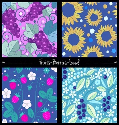 Berries and seed pattern set vector