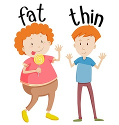 Opposite adjectives fat and thin vector image